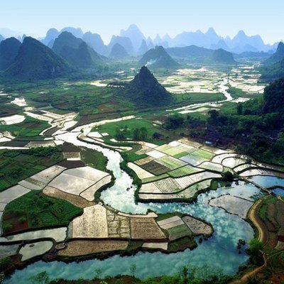 paddy field in China