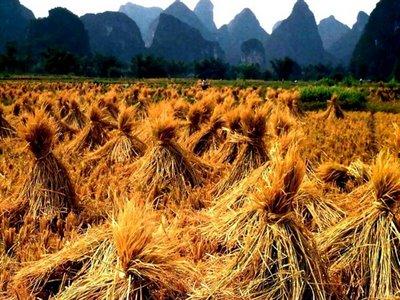 Yangshou, Guangxi