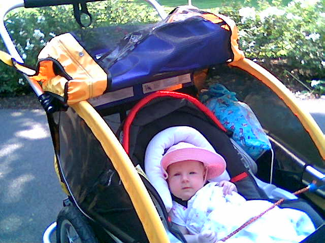 There You Can See The Whole Get Up Baby In Car Seat Trailer