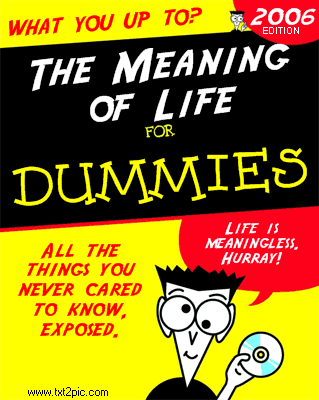 Andrea Ciulu Blog The Meaning Of Life For Dummies