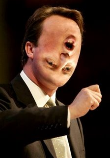 David Cameron - the 'flip-flop' king