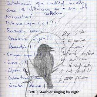 Sing at night