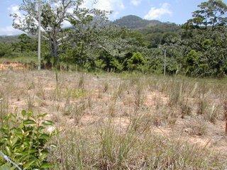 property, La Ceiba, Honduras