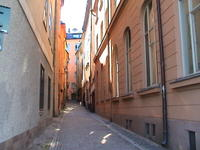 A narrow cobblestoned street