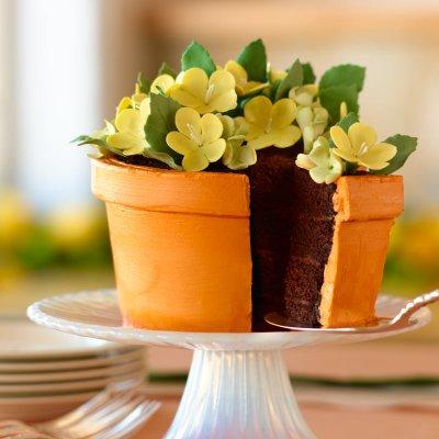 Мастер-класс торт горшок с цветами