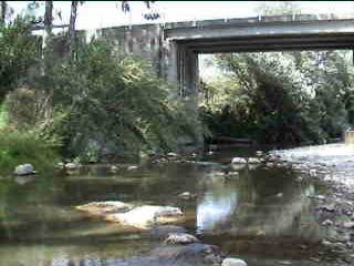 Rio Genal contaminado