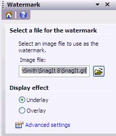 watermark in snagit