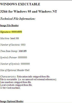 file information displayed
