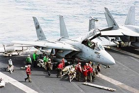 F-14 Tomcat (c) Askfactmaster.com
