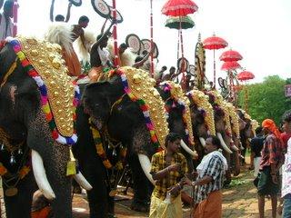 Ezhunnellippu of elephants in the kavu...