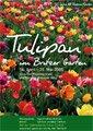 Tulipan Britzer Garten