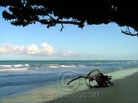Diani Beach, Kenya Coast