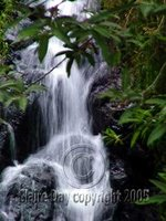 Waterfall, Aberdare National Park, Kenya
