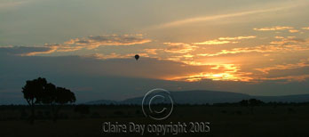 Hot-air balloon at sunrise, Masai Mara, Kenya safari wildlife