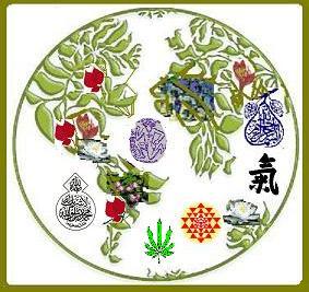 Mundo lleno de hojas y simbolos