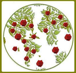 Mundo de Rosas...