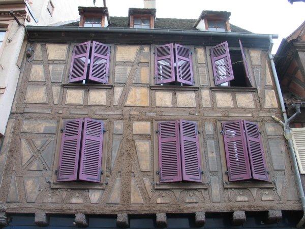 Exil int rieur tulipes violettes et d lices for Volet occultant interieur