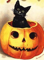 halloween cat with pumpkin
