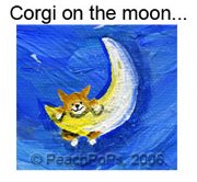 corgi dog on the moon