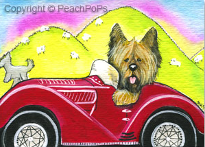 Briard in a car painting