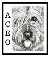 Briard Pen Ink Drawing ArT Card
