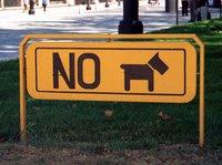 Coelho Mau e Sócrates não terão respeitado este sinal