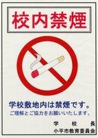 Prohibido fumar dentro del instituto. Me pregunto a quién irá dirigido.