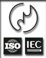 En Japalandia prima el de arriba, el JIS. Reconozco que el logotipo es original e impactante, y tiene un curioso aire a ying y yang