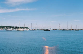 Boats docked at Vineyard Haven