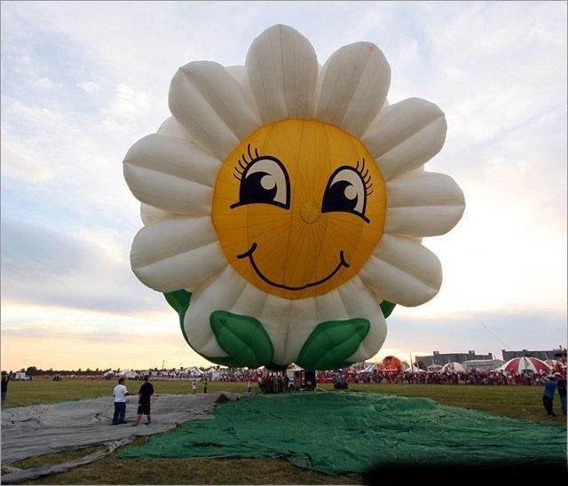 самые красивые шары воздушные с рисунком