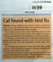 Cat found with bird flu in Germany