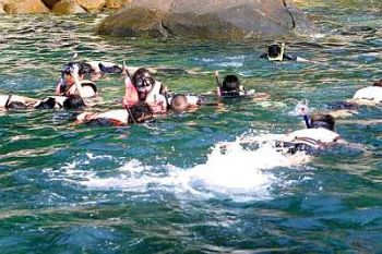 There are at least 10 snorkeling spots, with the full works, onl Pulau Perhentian.