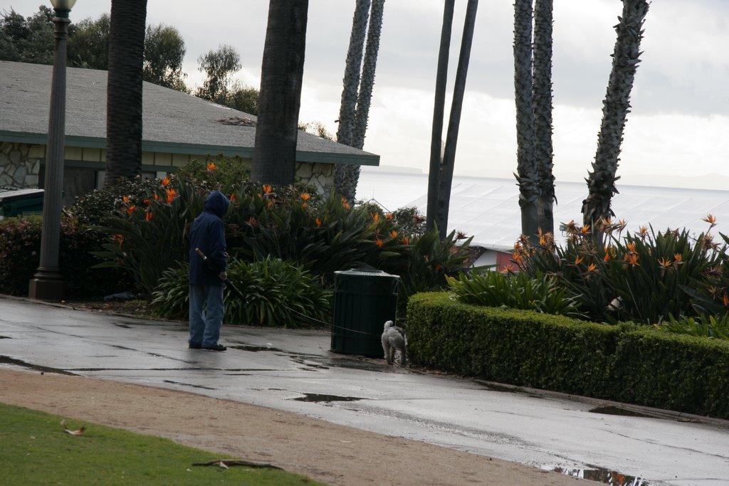 Santa Monica Ocean Avenue. Digital Photograph. © 2006 Shawn Kielty.  All rights reserved.