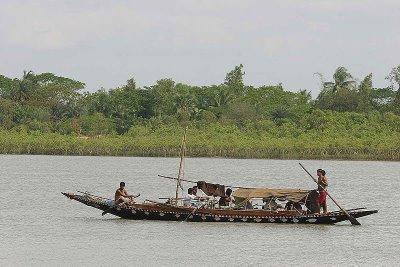 Boat in Sundarbans