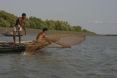 fishing in Sundarbans