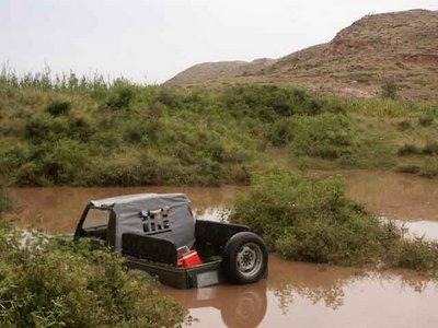 stuck in Ranthambore