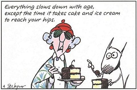 Maxine Cartoons Jokes Maxine Cartoons