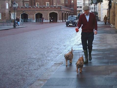 Hombre paseando dos perros. Londres, 2005