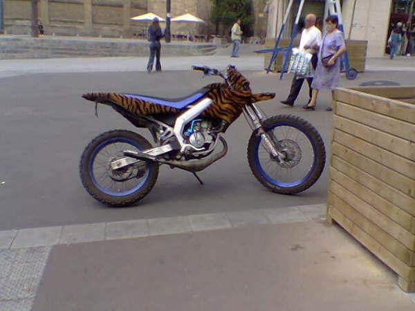 Moto tuneada
