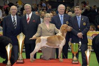 mundial polonia 2006: