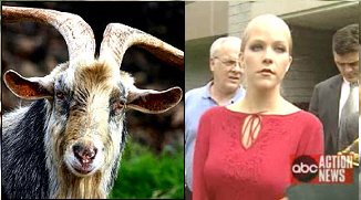 image: bbc goat and deb lafave