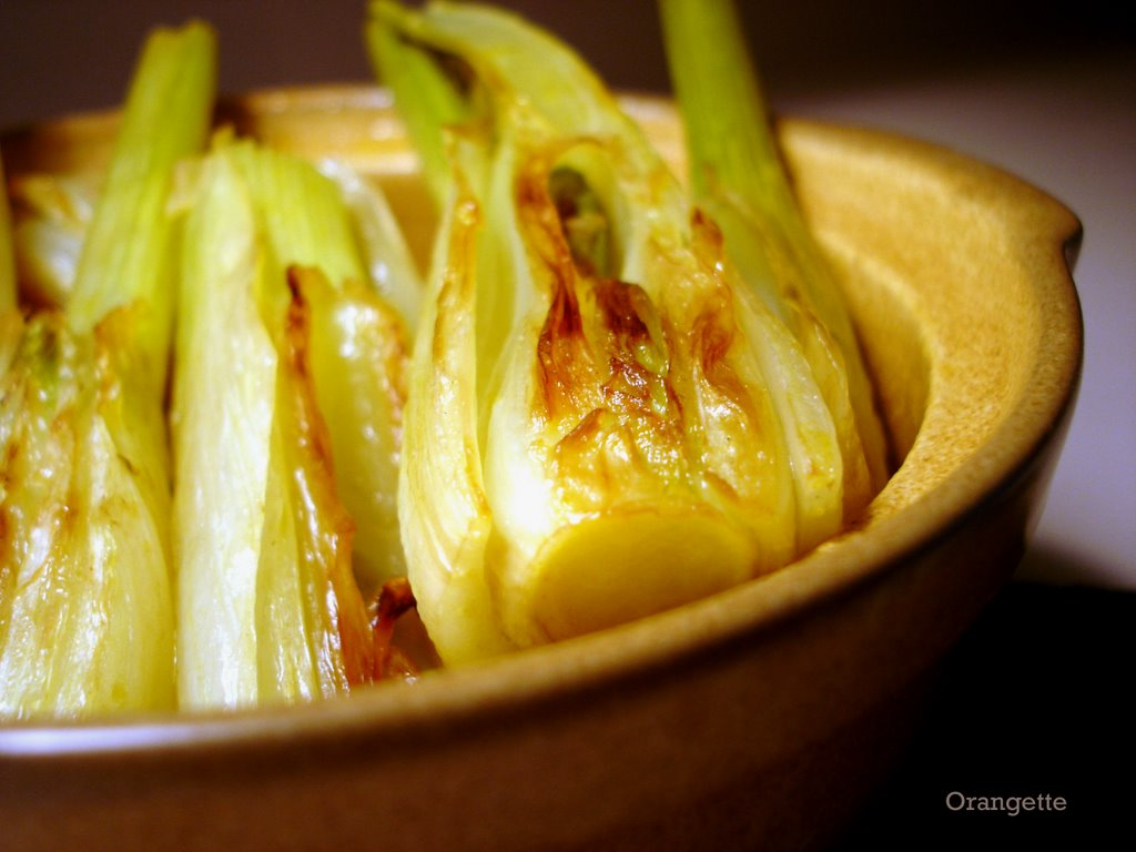 25 Truly Fabulous Fennel Recipes  Martha Stewart