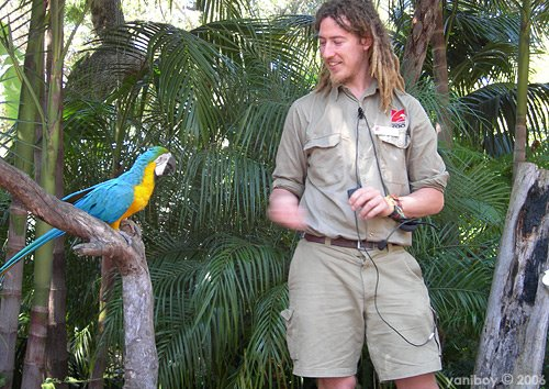 how to become a zookeeper adelaide
