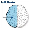left-brained