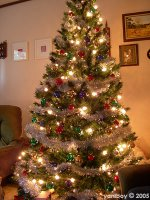 oh christmas tree... 2005