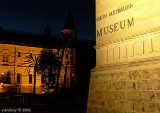 south australian museum 2006