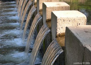 weir 2006