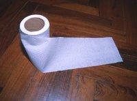 Peruvian toilet paper