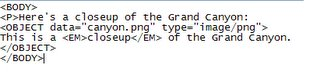 Optimisation du Flash selon les normes W3C, avec la balise Object