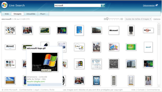 Page de résultats pour la recherche d'images sur le moteur de recherche Windows Live Search de MSN